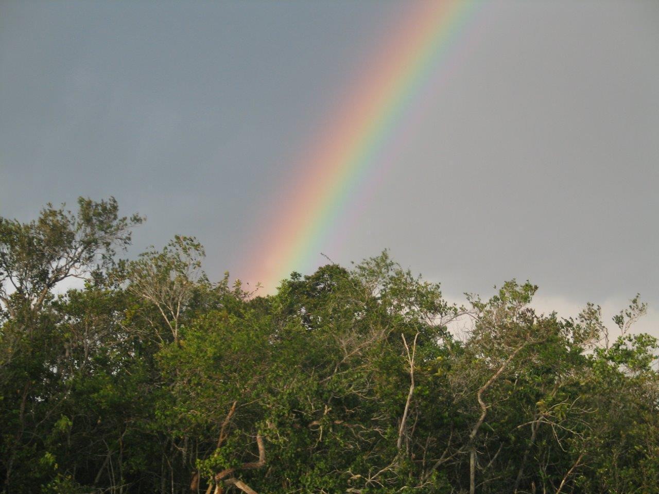 2005_Amazzonia_24